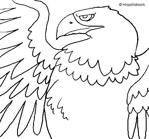 Coloriage de Aigle impérial romain pour Colorier