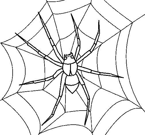 Coloriage de Araignée pour Colorier