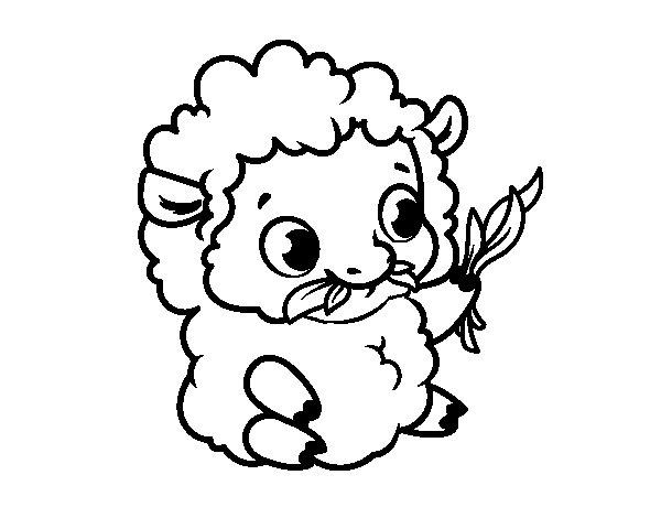 Coloriage de Bébé mouton pour Colorier
