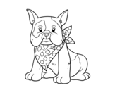<span class='hidden-xs'>Coloriage de </span>Bouledogue français à colorier