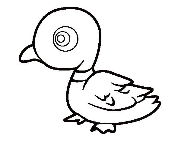 Coloriage de Canard de rivière pour Colorier