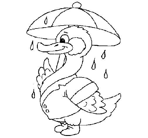 Coloriage de Canard sous la pluie pour Colorier