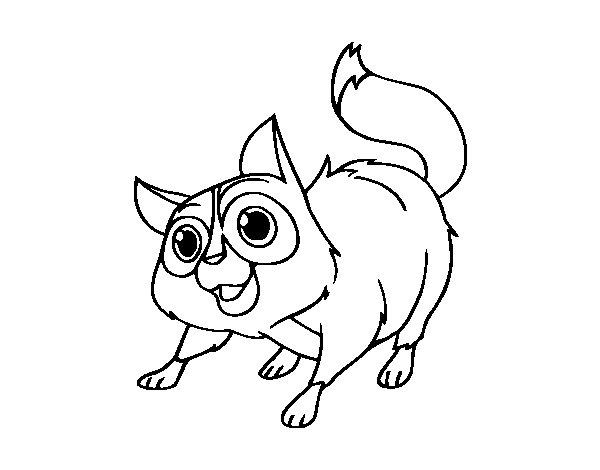 Coloriage de Chat de gouttière pour Colorier