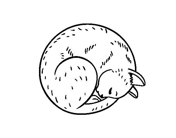 Coloriage de Chat reposant pour Colorier