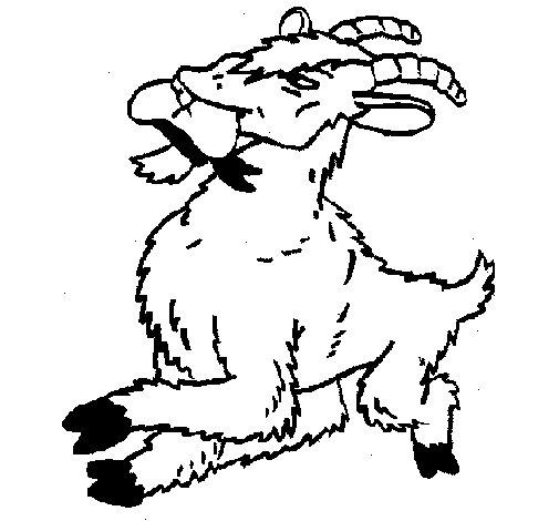 Coloriage de Chèvre 1 pour Colorier