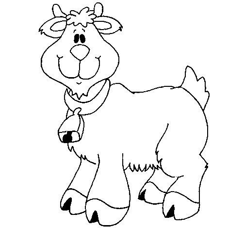 Coloriage de Chèvre 3 pour Colorier