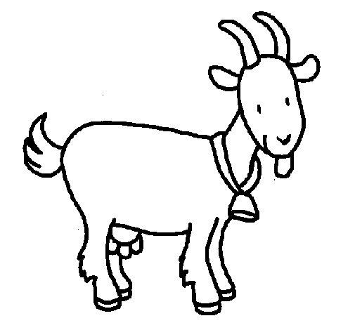 Coloriage de Chèvre pour Colorier