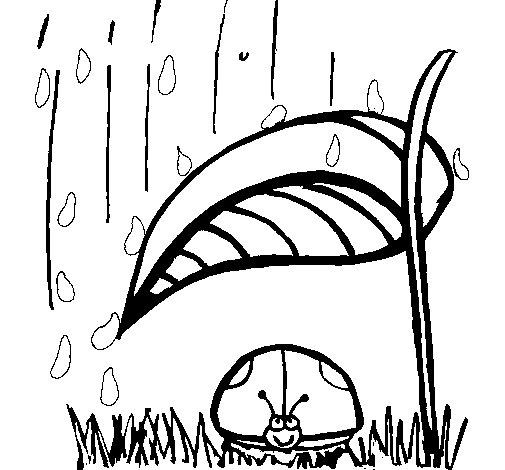 Coloriage de Coccinelle à l'abri de la pluie pour Colorier