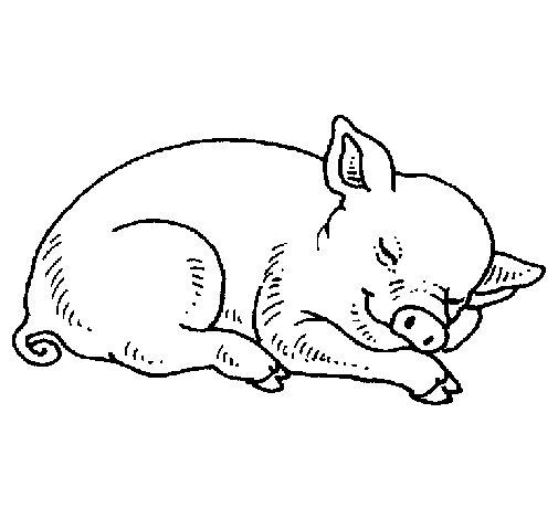Coloriage de Cochon qui dort pour Colorier