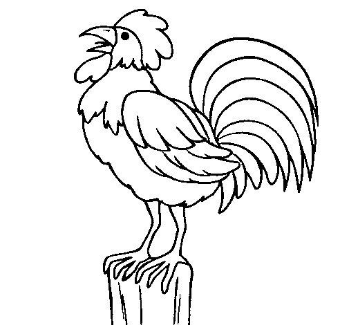 Coloriage de Coq chantant pour Colorier