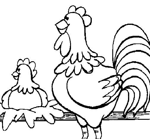 Coloriage de Coq et poule pour Colorier