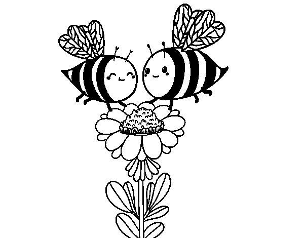 Coloriage de Deux abeilles pour Colorier