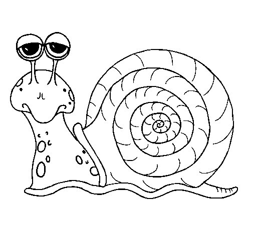 Coloriage de Escargot 3 pour Colorier