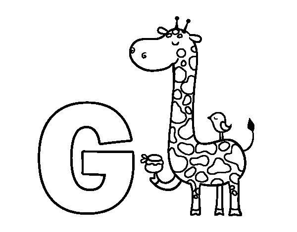 Coloriage de g de girafe pour colorier - Coloriage de girafe ...
