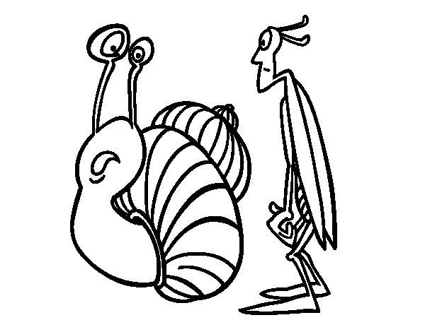 Coloriage de Grillon et Escargot pour Colorier