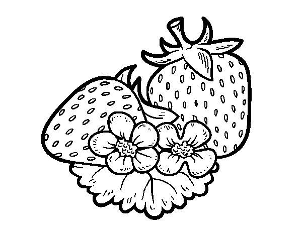 Coloriage de Grosses fraises pour Colorier