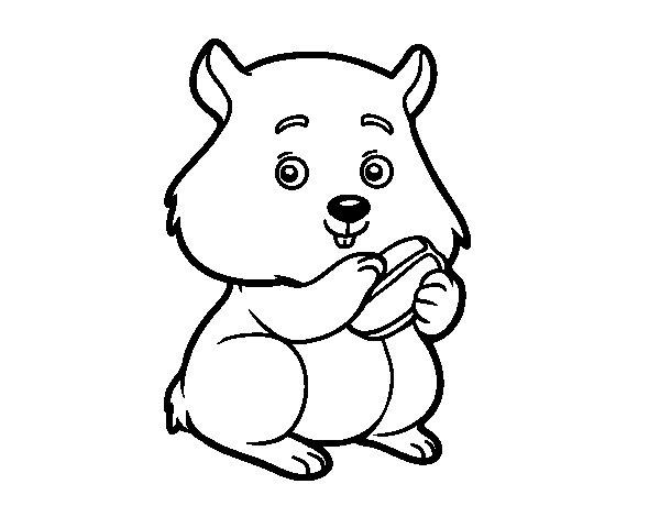 Coloriage de Hamster boulot pour Colorier