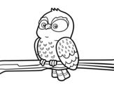 <span class='hidden-xs'>Coloriage de </span>Hibou sur une branche à colorier
