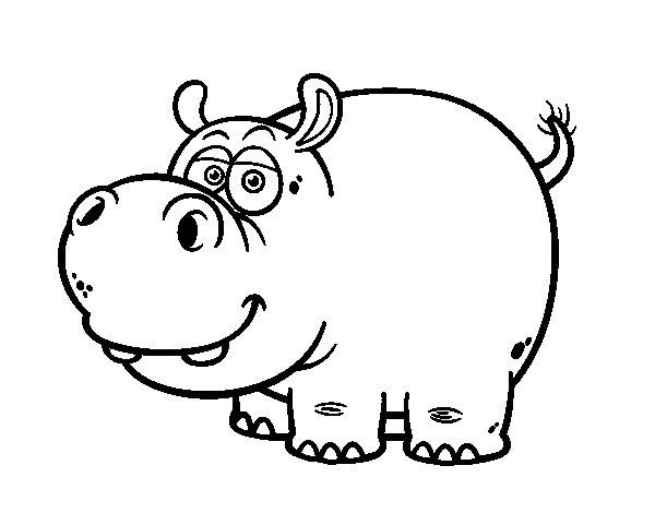 Coloriage de Hippopotame amphibie pour Colorier