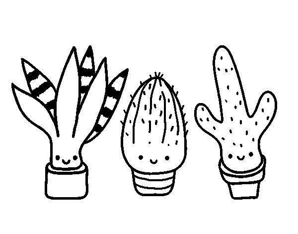 Coloriage de Mini cactus pour Colorier