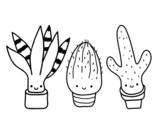 <span class='hidden-xs'>Coloriage de </span>Mini cactus à colorier