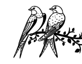 Dibujo de Paire d'oiseaux