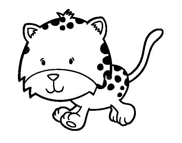 Coloriage de Petit guépard qui course pour Colorier