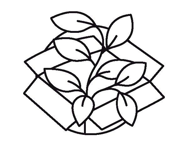Coloriage de Planta Ecológica pour Colorier