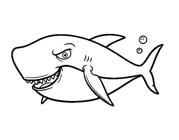 Coloriage de requin de grandes dents pour colorier - Coloriage requin a imprimer ...