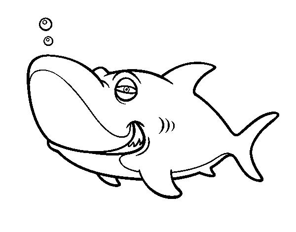 Coloriage de requin tigre pour colorier - Requin en dessin ...