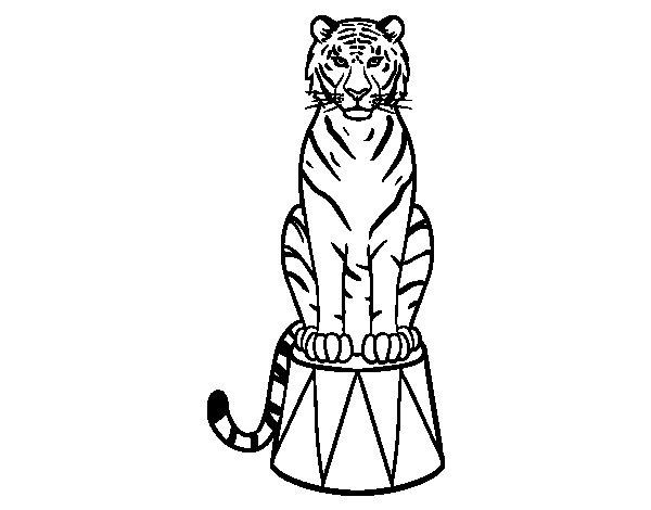 Coloriage de Tiger du cirque pour Colorier