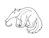 <span class='hidden-xs'>Coloriage de </span>Un cochon de terre à colorier