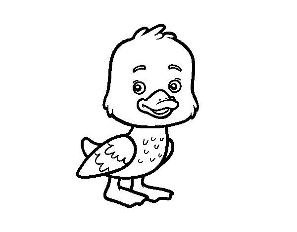 Coloriage de Un petit canard pour Colorier