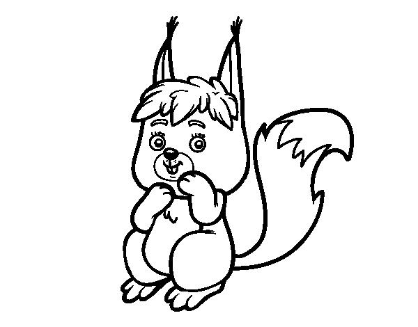 Coloriage de un petit cureuil pour colorier - Coloriage petit ecureuil ...