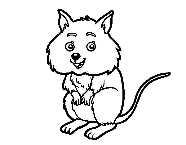 Coloriage de Un petit hamster pour Colorier