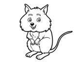 <span class='hidden-xs'>Coloriage de </span>Un petit hamster à colorier