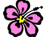 Coloriage Fleur hawaïenne colorié par m .l kl-