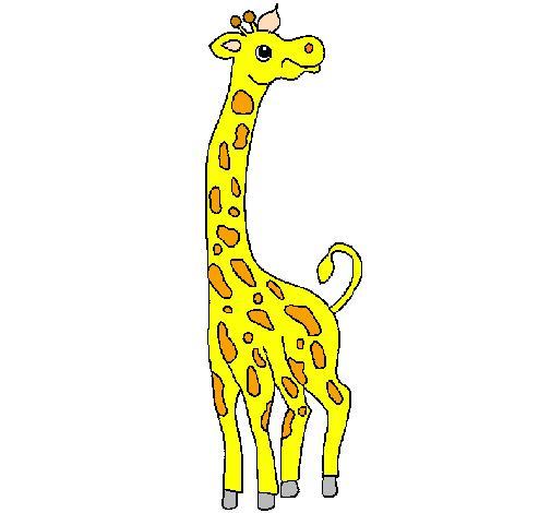 Dessin de girafe colorie par membre non inscrit le 13 de for Prix d une girafe a poncer