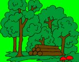 Coloriage Bois colorié par keetye