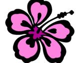 Coloriage Fleur hawaïenne colorié par angela