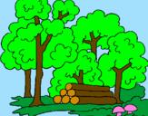 Coloriage Bois colorié par yousra