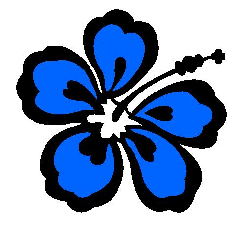 dessin de fleur hawaïenne colorie par membre non inscrit le 12 de