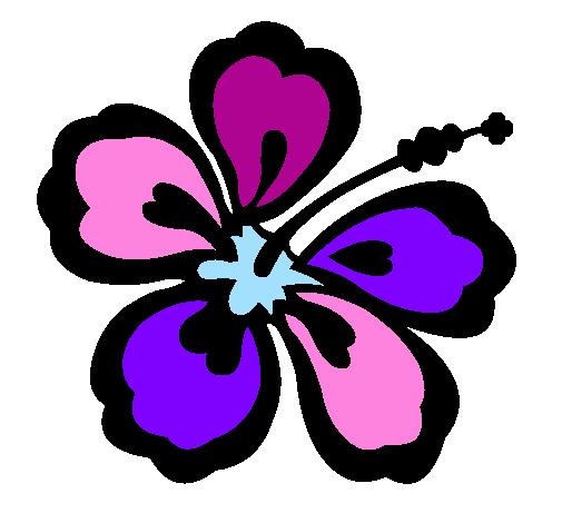 Dessin de fleur hawa enne colorie par membre non inscrit le 22 de avril de 2011 - Coloriage hawaienne ...