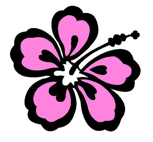 Dessin De Fleur Hawaienne Colorie Par Membre Non Inscrit Le 01 De