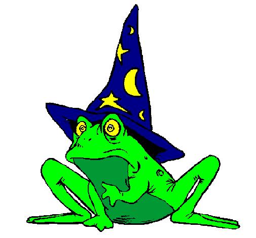 magicien transform en grenouille