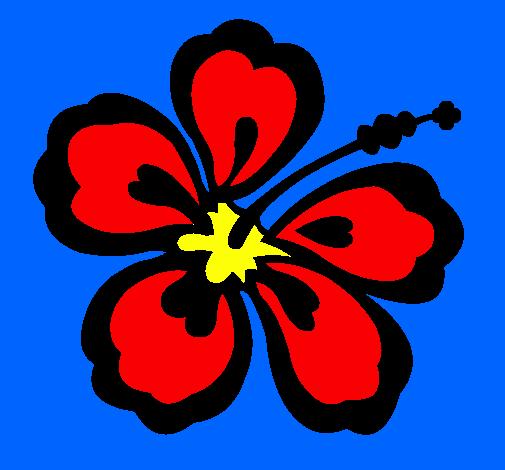 Dessin De Fleur Hawaienne Colorie Par Membre Non Inscrit Le 06 De