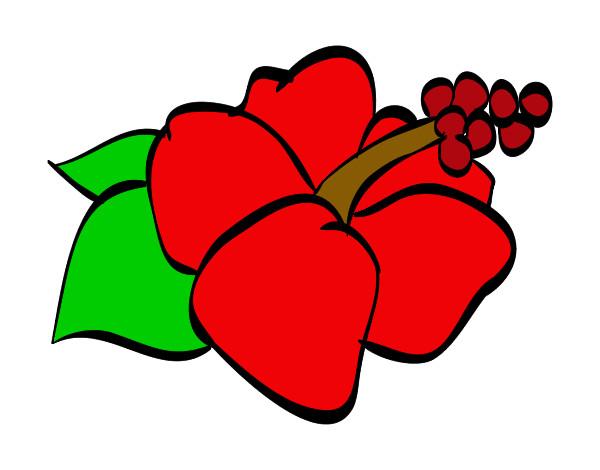 Dessin de fleur colorie par anne le 31 de d cembre de 2012 - Fleur en dessin ...