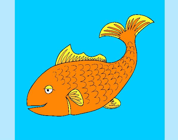 Dessin de poisson orange et jaune c 39 est beau colorie par amanda le 01 de avril de 2012 - Dessins de poissons de mer ...