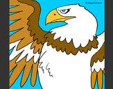 Coloriage Aigle impérial romain colorié par -Smity-