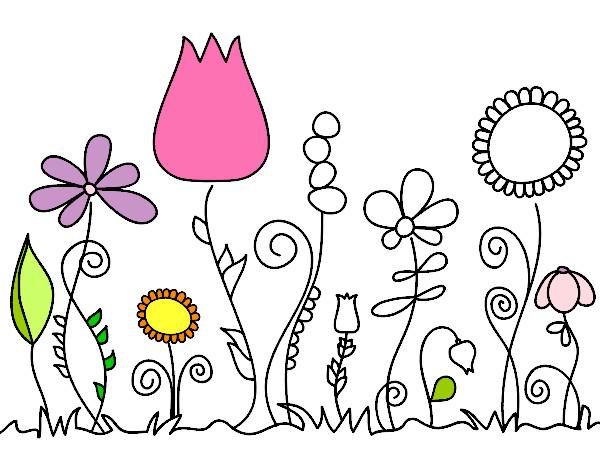 Dessin de fleurs de for t colorie par jojotte le 31 de ao t de 2014 - Initiatives fleurs et nature ...